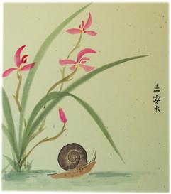 snailandorchid.jpg