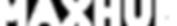 Logo_MAXHUB-white.png