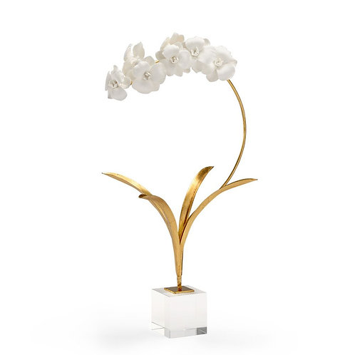 Porcelain Orchid in Crystal Base