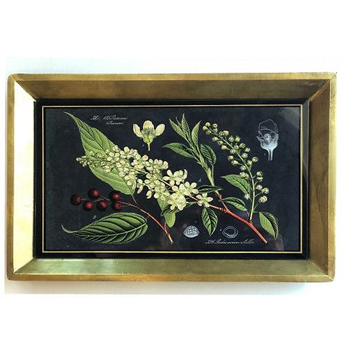 Antique Copper Botanicals Tray