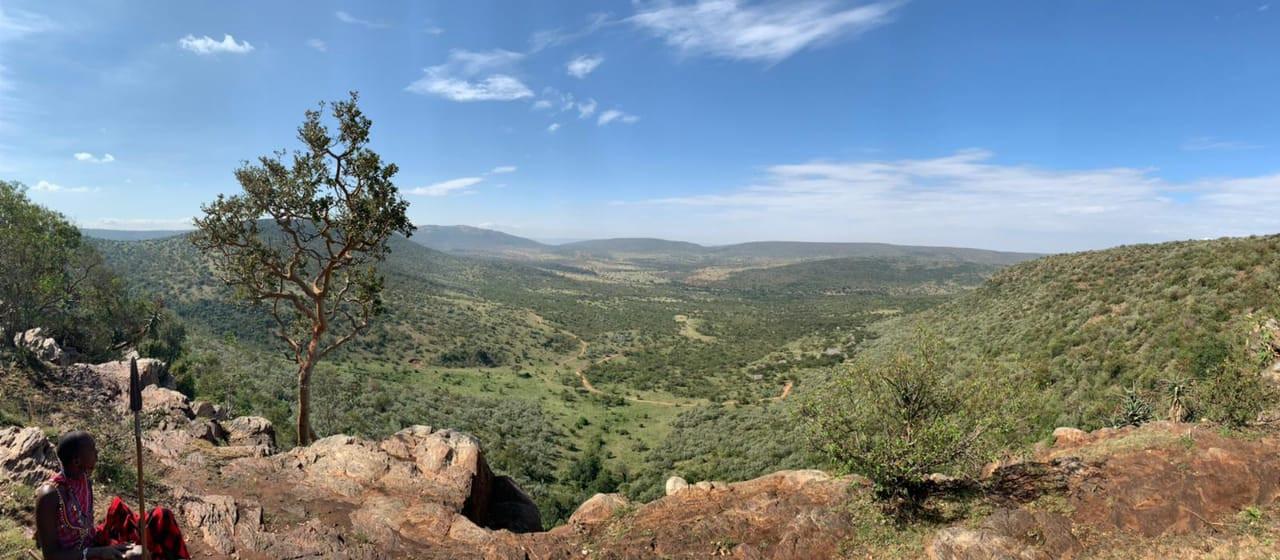 Elephant hike view