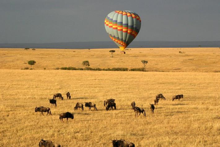 Masai Mara Hot air Balloon Safari.jpg
