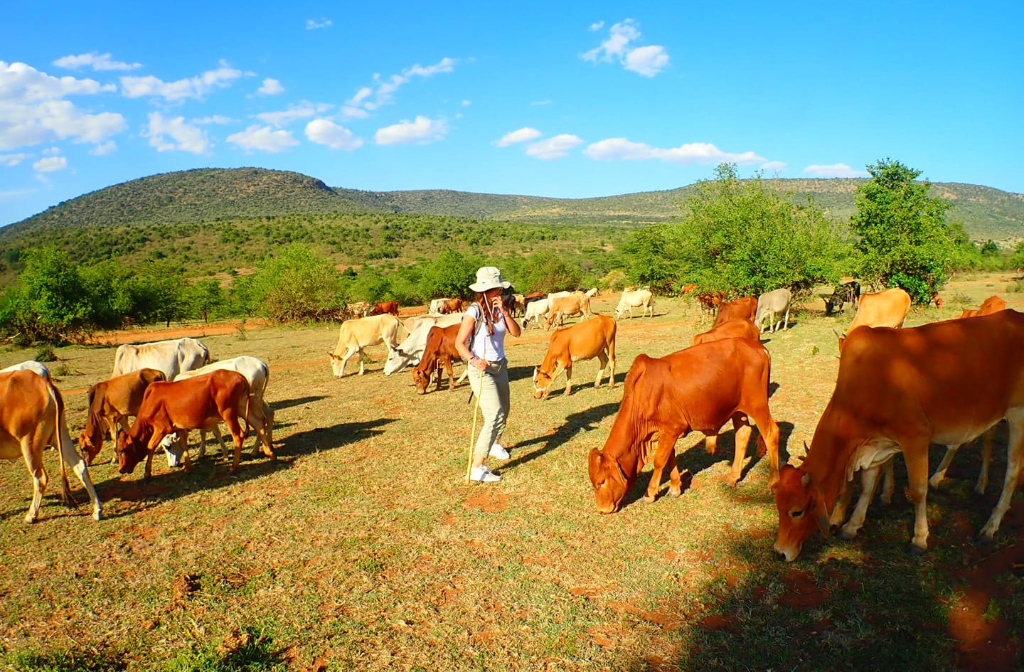 maasai herding experience with Audrianna