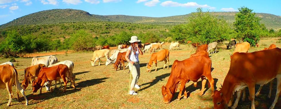 maasai herding experience with Audrianna