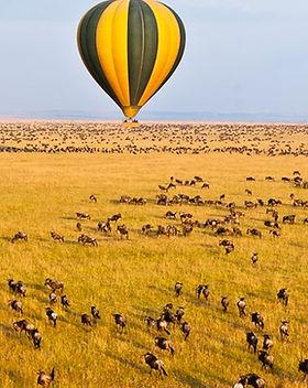 Masai Mara Hot Air Ballooning.jpg