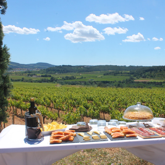 Picnic among the vineyards