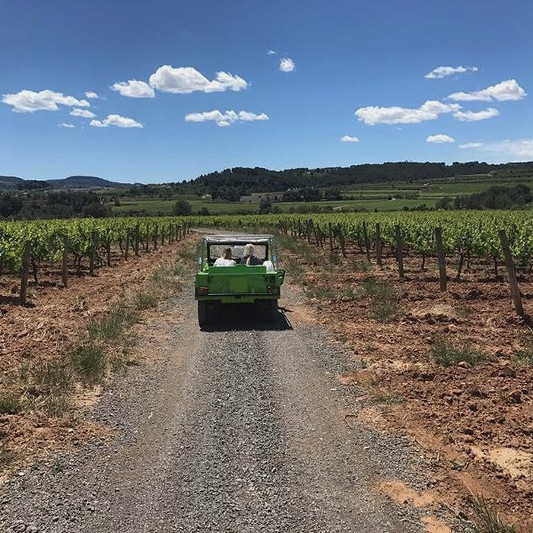 Wine country adventure