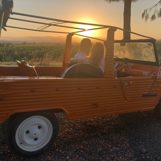 Wine tour with vintage cars