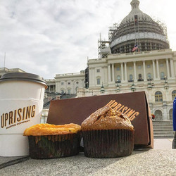 There are two muffins sitting at the #USCapital, and one muffin says to the other, _Is that Senator