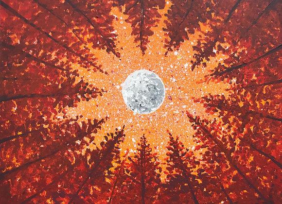 Moonlit Orange Tops