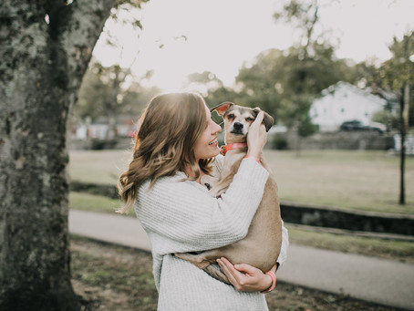 Pet Custody In Texas