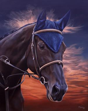 """""""Horse Cascada"""""""