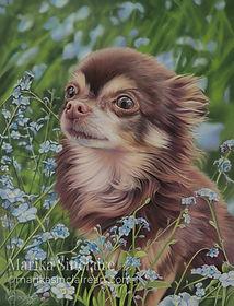 Pet portrait in pastels, A3