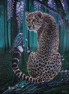 Cheetah in wisteria tree, 80x60cm, 2021 WM (Large).jpg