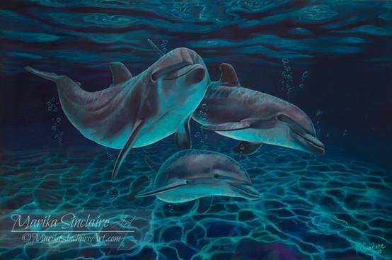 """""""Delfiner under vatten"""""""