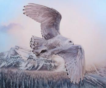 """""""Flying Snowy Owl"""""""