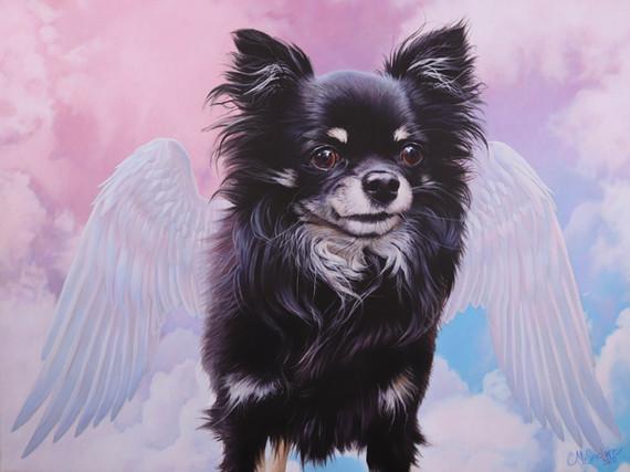 """""""Chihuahua med vingar"""""""