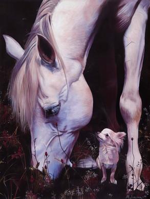 """""""Tillit - Häst med Luna"""""""