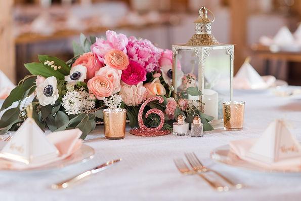 Pink & Gold Wedding_The Barns at Maple V