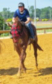 Maple Valley Farm LLC, Mikimoto's Mojo, Anna Binkley, Foaling, Breeding, Boarding, WV, Charles Town, Shenandoah Jct, Charles Town Races, VA, MD, KY, Mikimoto's Mojo Foals, crop, racing, horse