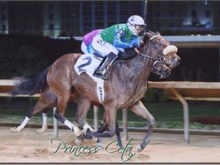 Horse of the Month: Princess Ceta