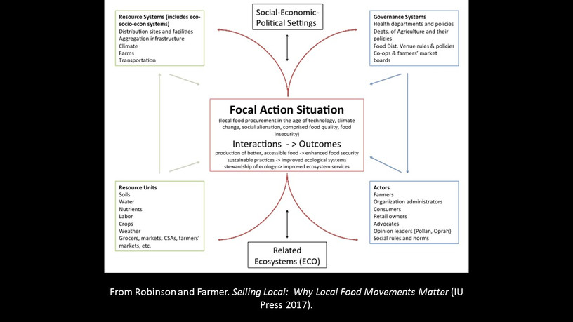 Focal action situation graphic.jpg