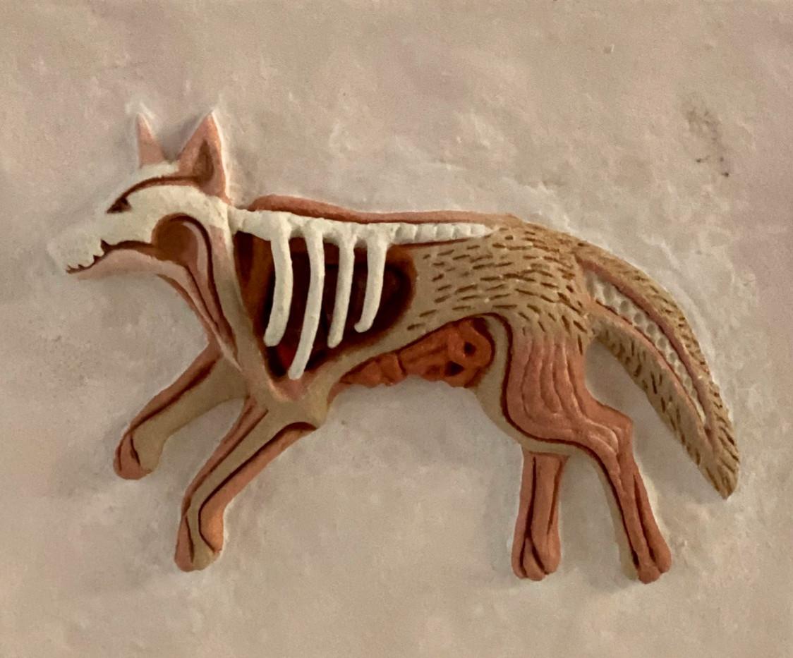 Coyote Spread
