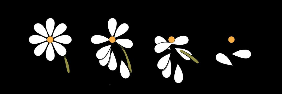 USE-WEBSITE-FLOWER.png