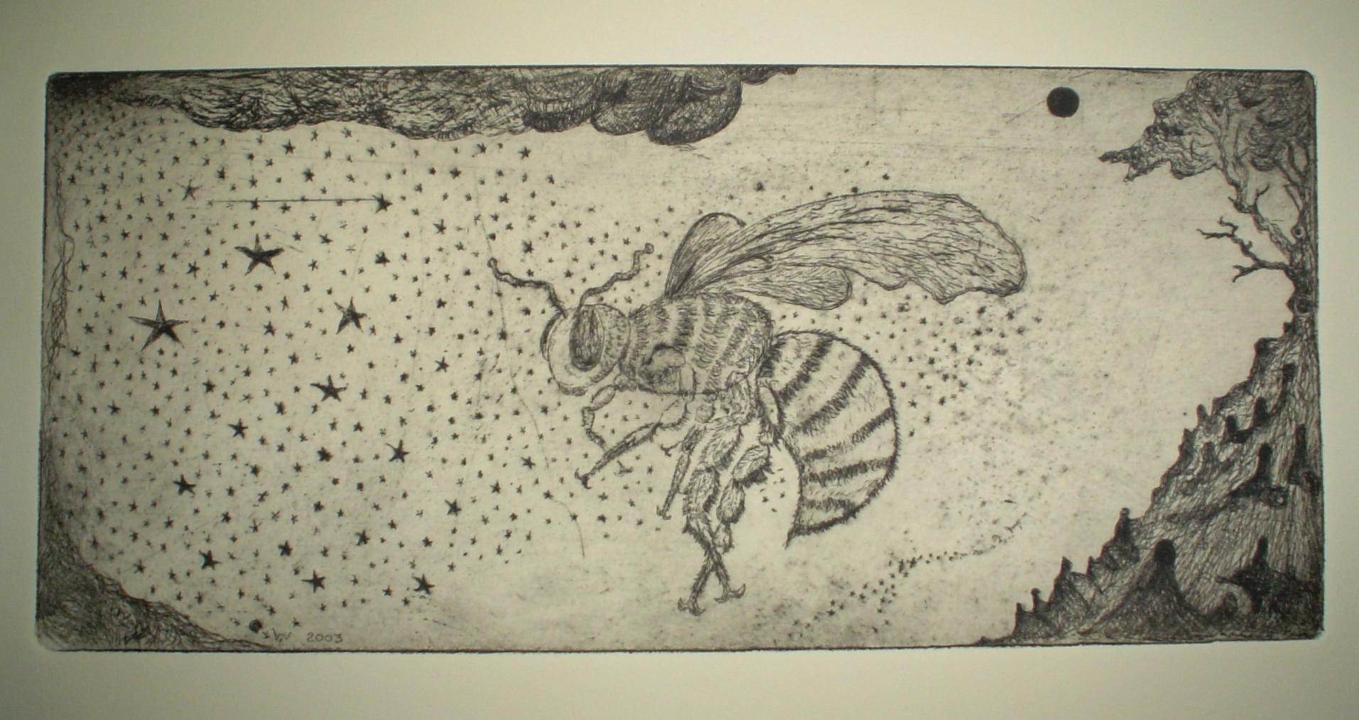 Bee-n-Starz