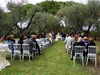 Cerimonia nell'oliveto