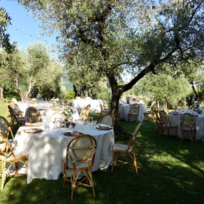 TABLES  IN THE OLIVE GROVE