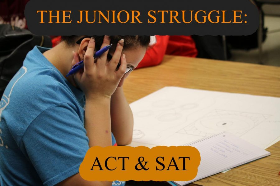ACT and SAT Prep Student