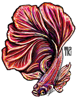 Beta Fish red.png