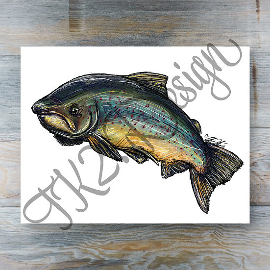 Atlantic Salmon Print