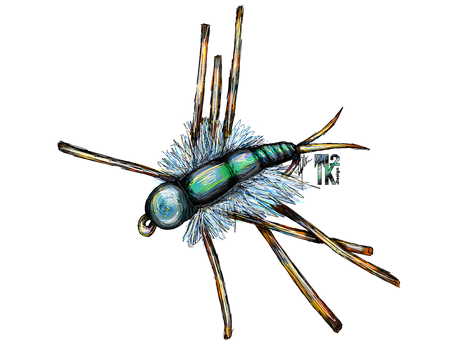 stonefly copy.png