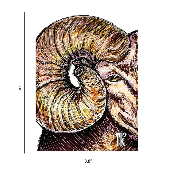 Big Horn Sheep Sticker