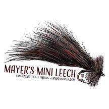 Mayer's Mini Leech-01.png