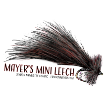 Mayer's Mini Leech-01.png