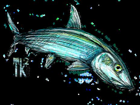 Bone Fish Logo.png