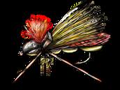 Hopper Juan Logo.PNG