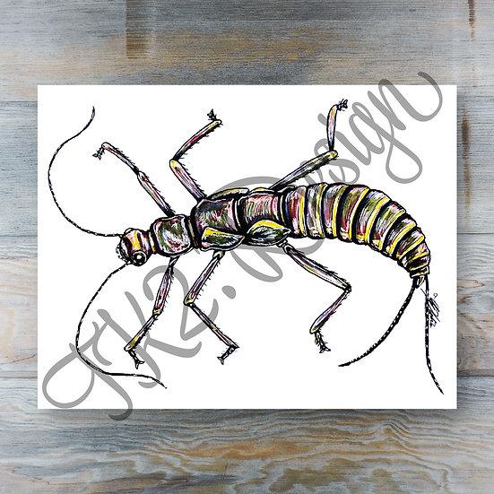 Stonefly Bug Print