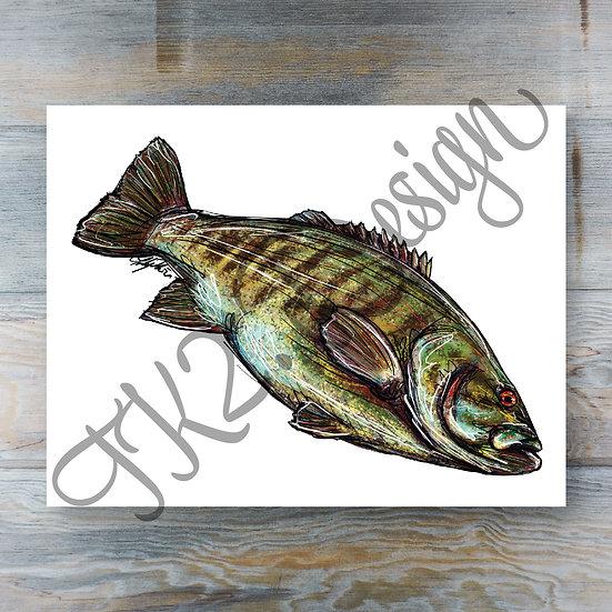 Smallmouth Bass Print