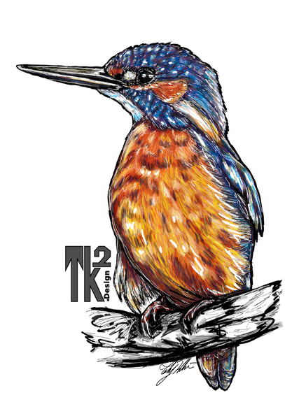 KingFisher-2 copy.png