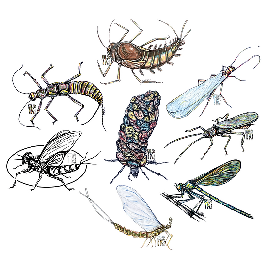 Buggin Out Sticker Pack