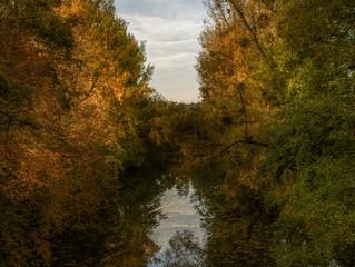 Goldener Oktober im Hohenlohekreis