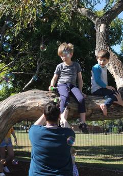 Cheeky fun in a tree