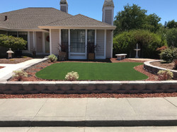 Front yard synthetic lawn install w/ landscaping