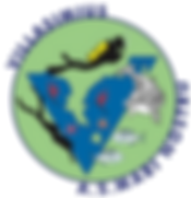 Logo Marinostru.png