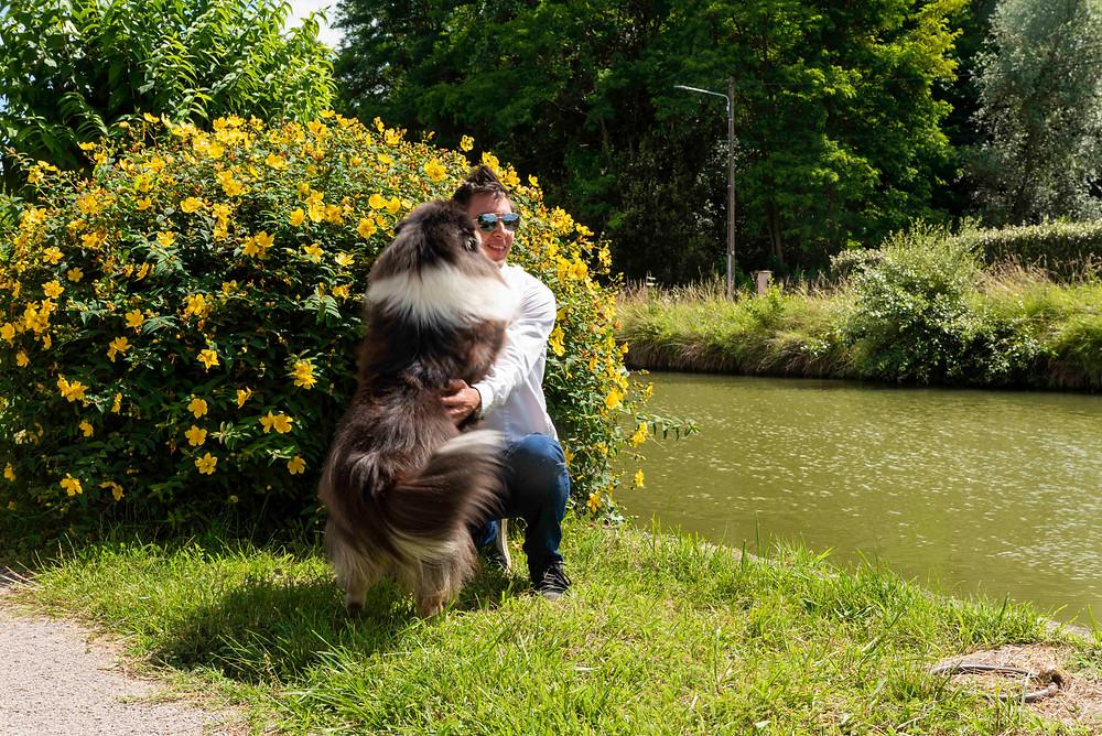 Los perros de raza grande no pueden vivir en pisos