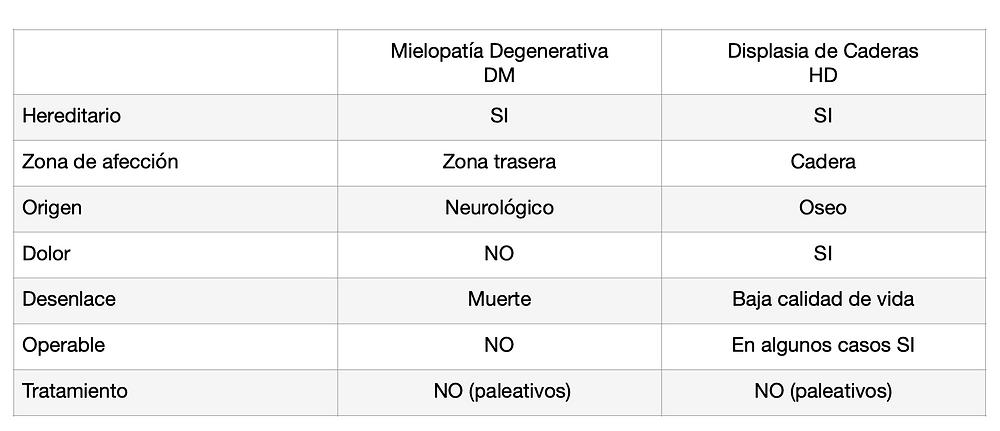 DM Mielopatia Degenerativa
